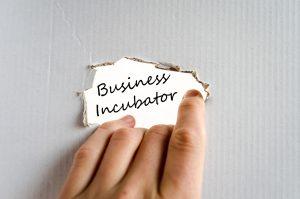 startup incubator definition